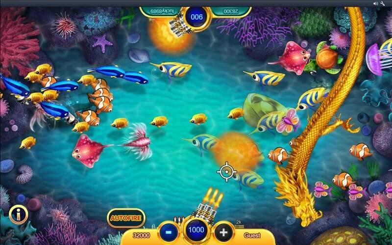 cash fish gameplay