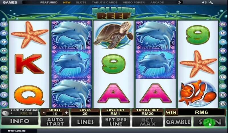 dolphin reef gameplay